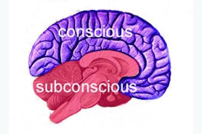 brain copy copy