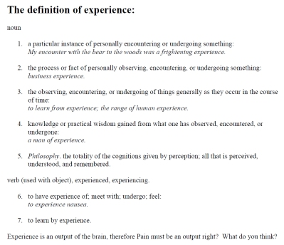 Definition of Experience