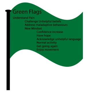 Green Flag1