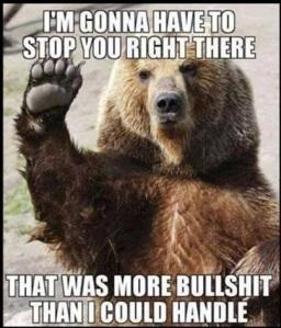BS Bear
