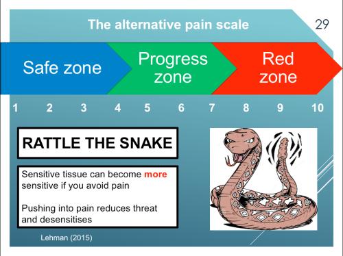 The alternative pain scale
