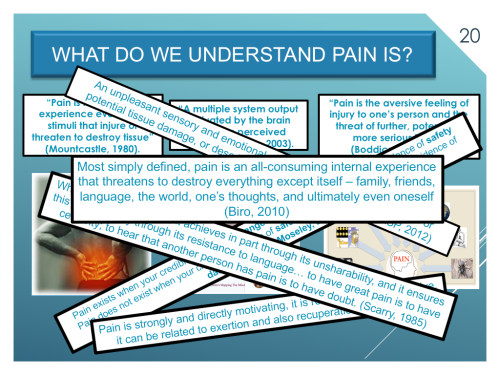 What do we understand pain is?