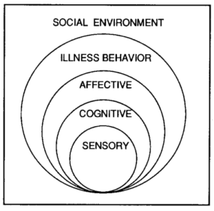 Waddell's BPS model